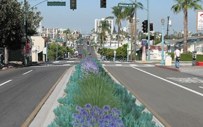 University Avenue Mobility Plan Project Update