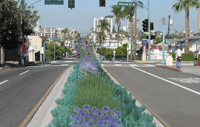 University Avenue Mobility Plan
